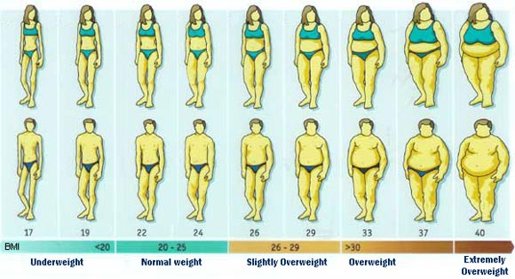 "An ""overweight"" person  (called ""slightly overweight"" in this table) typically has a BMI that falls between 26-29, and an ""obese"" person has a BMI greater than 30."