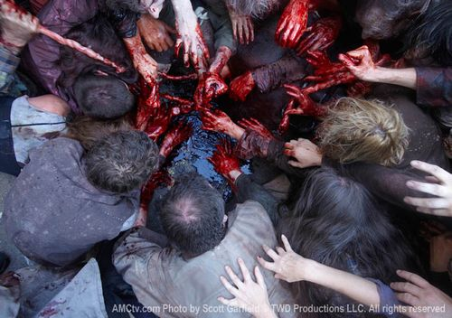 feeding-frenzy-walking-dead