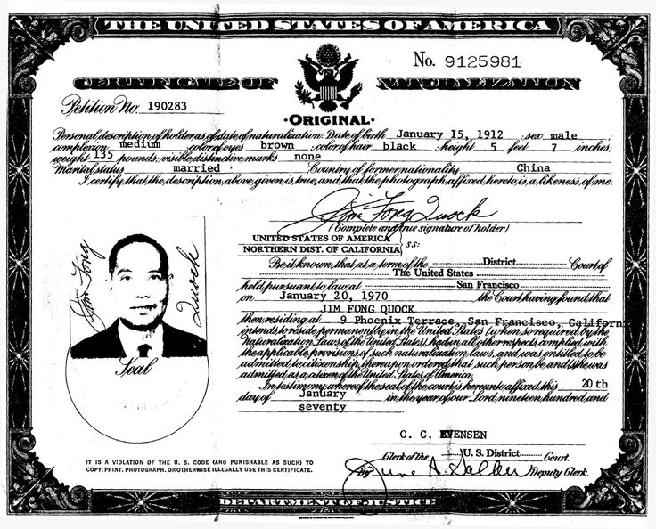 "The falsified documents of a Chinese American so-called ""paper son""."
