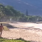 Hawaiian Man Files Lawsuit After Being Beaten by Police Officer for Praying Over Monk Seal