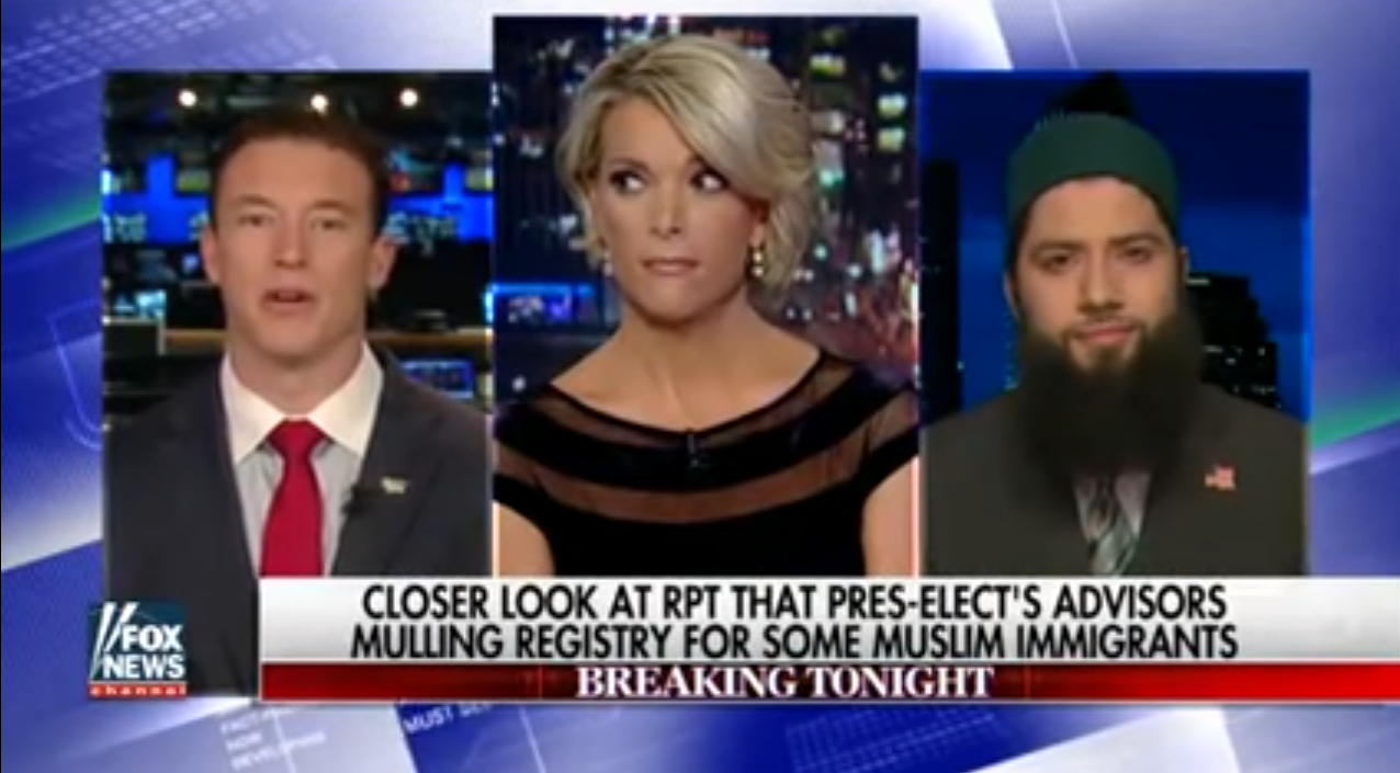 Megyn Kelly is unable to control this side-eye she gives to Carl Higbie when he says he wasn't talking about incarceration. (Photo credit: YouTube / Fox News)
