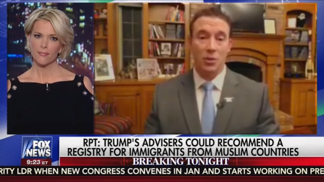 Trump supporter Carl Higbie in a Fox News appearance with Megyn Kelly on November 16, 2016. (Photo credit: Fox / Mediate)